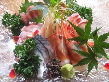 酒菜工房禅や - 料理写真:毎日仕入れる鮮魚のお造里
